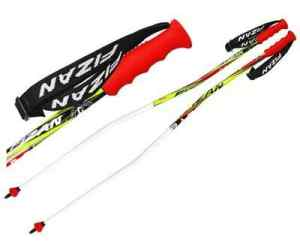 FIZAN Kije narciarskie RACE GS CURVED
