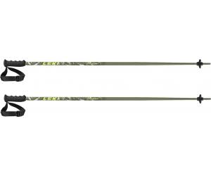 Kije narciarskie Leki Mitch green