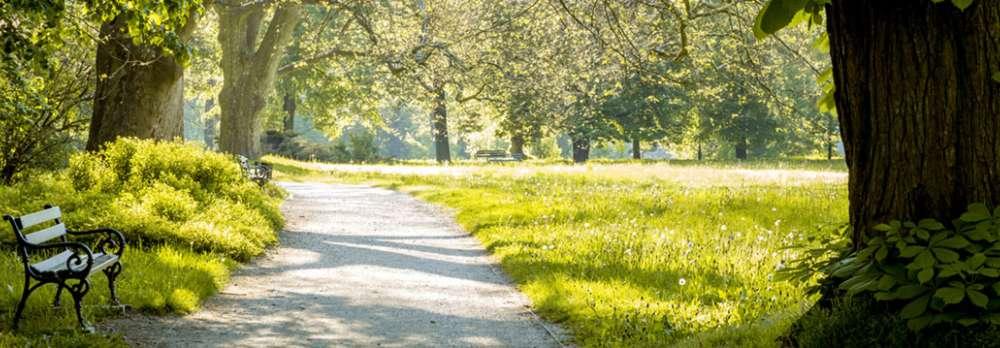 V Zlot Nordic Walking